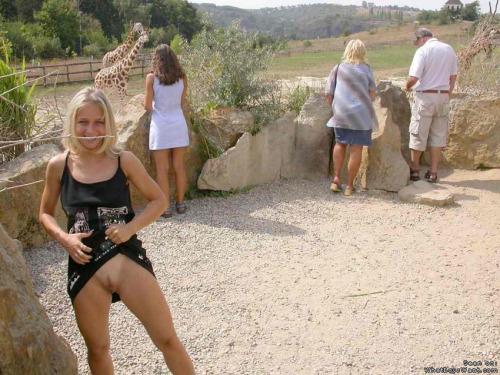 Image 1: Jeune amatrice blonde sans culotte montre sa chatte au zoo