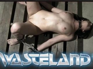Image 1: Video chienne blonde nue attachee et fistee par son maitre