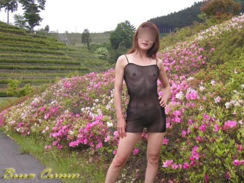 Image 3: Amatrice qui s exhibe dans de jolis paysages