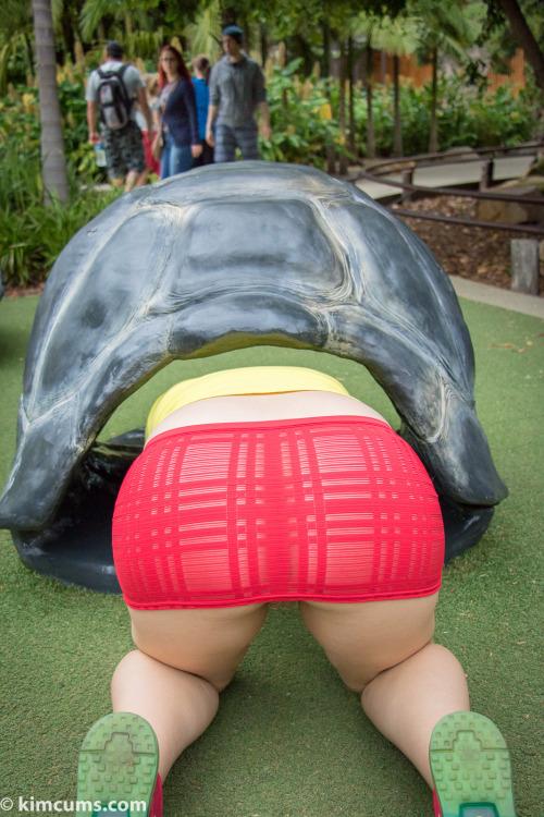 Image 3: Upskirt sans culotte d une amatrice dans un parc public