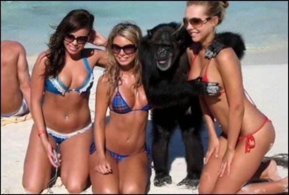 Image 3: Nouvelles photos sexy et drole a la plage