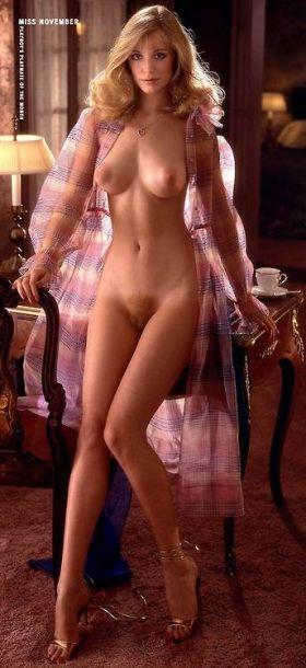 Shannon Tweed prend la pose, nue !